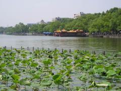Hangzhou 005