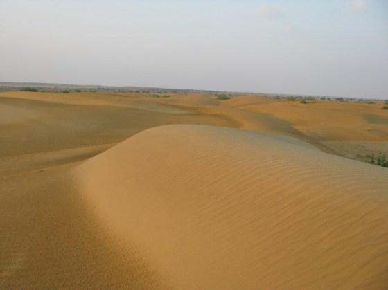 Jaisalmer - désert